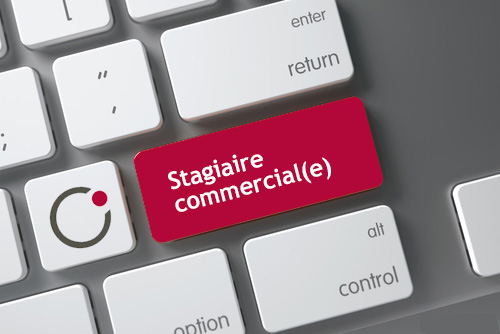 stagiaire commercial